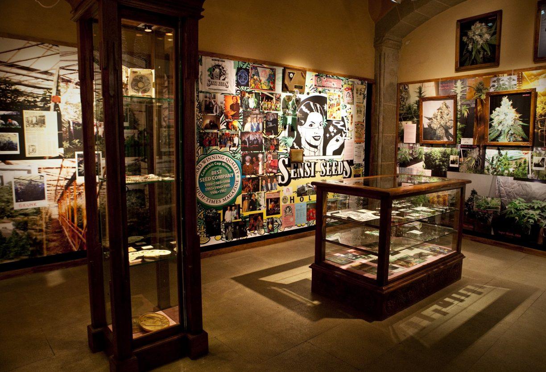 Kanabis Muzej